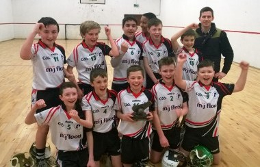 shinrone indoor hurling 2015
